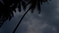 Timelapse of dusk sky over the trees. Stock Footage