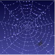 Spiderweb background Stock Illustration