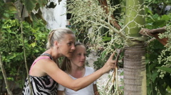 Mother and daughter looking at branch plant - stock footage
