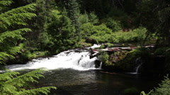 UPPER ROGUE RIVER WATERFALL Stock Footage
