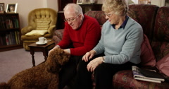 Happy senior couple sitting on sofa with dog. Shot on RED Epic. Stock Footage