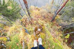 Feet sneakers walking on fall forest - stock photo