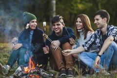 Smiling friends roasting marshmallows in forest - stock photo