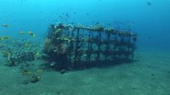 Artificial reef in Coral Garden, Tulamben, Bali Stock Footage