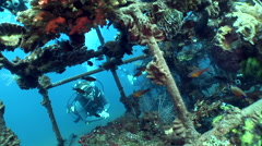 Artificial reef with diver in the background, Coral Garden, Tulamben, Bali - stock footage
