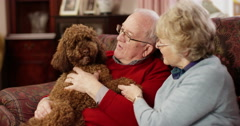 Happy senior couple sitting on sofa with dog. Shot on RED Epic. - stock footage