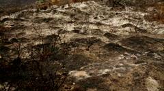 Desolate Landscape 2 - stock footage