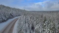 Aerial Oregon Mt Hood Stock Footage