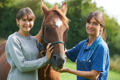 Stock Photo of Female Vet Examining Horse In Field With Owner