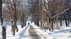 Winter path in the park and people UHD Stock Footage