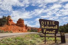 Dixie National Forest sign at Red Canyon, Utah - stock photo
