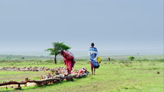 Massai women Stock Footage