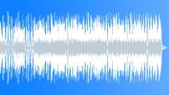 Bikers Bar (34-secs version) - stock music