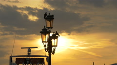 View of birds standing on a lamp post and a moored boat at sunset in Venice - stock footage