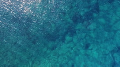 The flight above the water surface and the edge of the shore Stock Footage