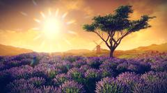Lavender fields with  solitary tree Stock Illustration