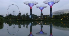Trees lights sculpture with ferris wheel Gardens by the Bay, Singapore Stock Footage
