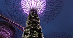 Trees lights sculpture Gardens by the Bay, Singapore Stock Footage