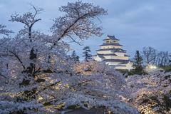 Tsurugajo Castle and cherry trees,Fukushima,Japan Kuvituskuvat