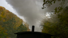 View of Mocanita's steam and beautiful autumn forest Stock Footage
