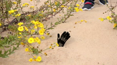 Man has just stepped on burial in the sand Stock Footage
