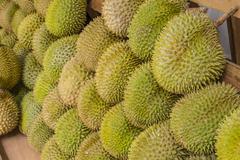 Large Amounts of Durian Fruit - stock photo