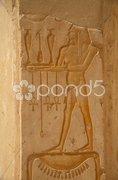 Egypt Series (Hatshepsut Hieroglyph) - stock photo