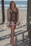 Young sexy woman at the Beach Stock Photos