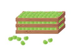 Wooden box with green apples Stock Illustration