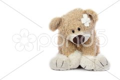 Hurt Teddy Bear Stock Photos