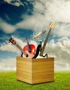 Music instrument in wooden box Kuvituskuvat