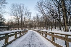 Snowy Boardwalk Trail Stock Photos
