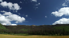 BEAUTIFUL SCENIC TIMELAPSE IN AN ALPINE MEADOW WITH ASPENS & CLOUDS FLOATING BY Stock Footage