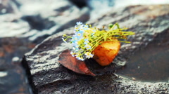 Bouquet of Blue Flowers on a Stone at Lake Shore Stock Footage