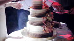 The couple cut the wedding cake Rustic Stock Footage