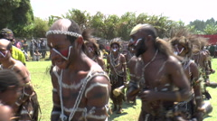 Native Papuans in customes sing and dance show - stock footage