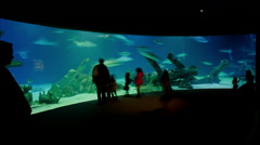 Albuquerque Aquarium Timelapse Stock Footage