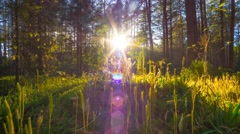 Sunset in the autumn magic forest, time-lapse Arkistovideo