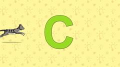 Cat. English ZOO Alphabet - letter C - stock footage