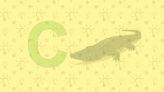 Stock Video Footage of Crocodile. English ZOO Alphabet - letter C