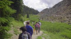 Five friends hiking together - stock footage