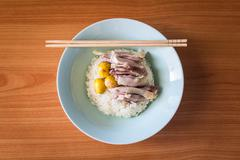 Steam chicken meat with steam rice in a dish - stock photo