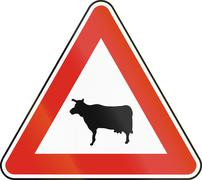 Road sign used in Slovakia - Cattle crossing - stock illustration