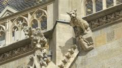 Gargoyles of Stephansdom, Vienna Stock Footage