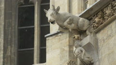 A gargoyle in the shape of a cow on St. Stephen's Cathedral, Vienna - stock footage