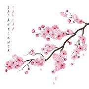 Realistic Sakura Branch Stock Illustration