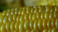 Ear of fresh corn with irregular rows of seeds Stock Footage