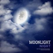 Moonlight night illustration Stock Illustration