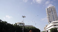 Pigeons fly around Dizengoff square fountain, Tel-Aviv, Israel Stock Footage