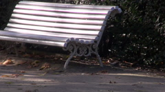 White benches by the hedge in the park Stock Footage